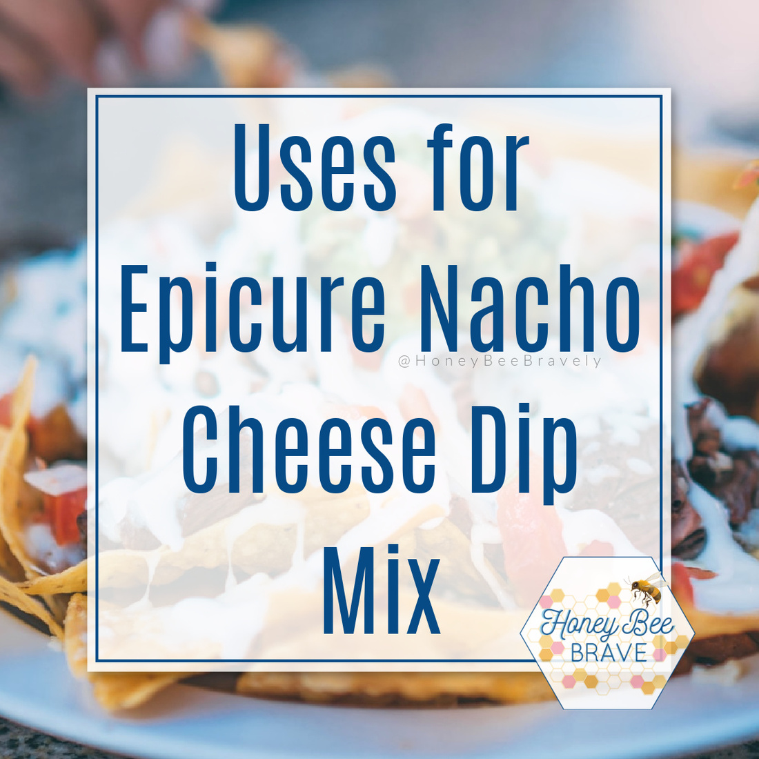 Nacho Average Dip Mix Epicure Nacho Dip Mix Recipes And Uses Direct Sales Party Plan And Network Marketing Companies Member Article By Megan Whitmore