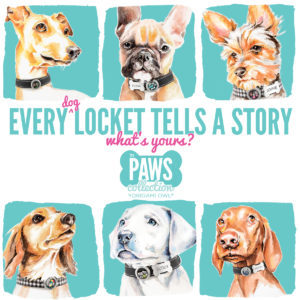 Origami Owl PAWs Collection - Dog Collars with Style