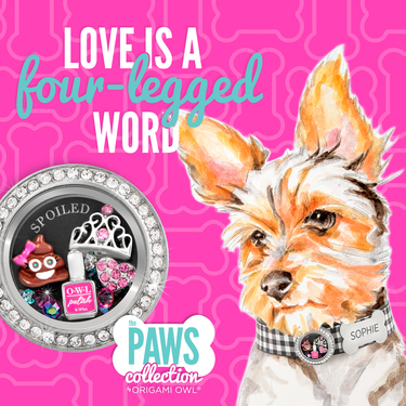 Introducing the Paws Collection by Origami Owl