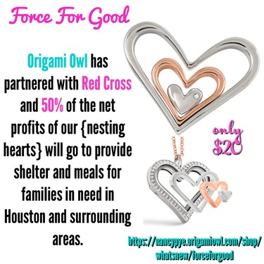Origami Owl appoints Brett Blake as new CEO | 375x375